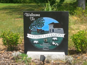 Entering Nature's Harmony Farm