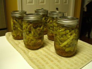 Dilled and rather pickled green beans