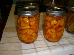 Pumpkin and butternut squash pickled and canned